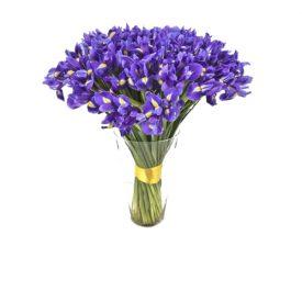 Buchete Irisi