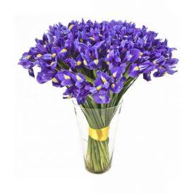 Buchet Irisi in Vaza