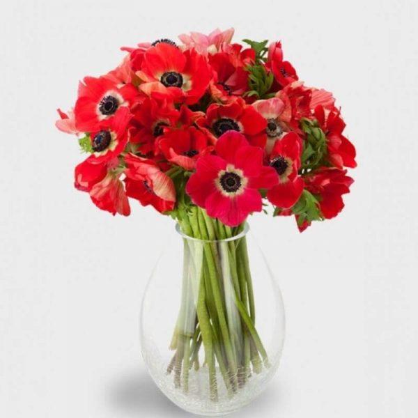 buchet flori anemone in vaza