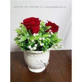 trandafiri rosii criogenati