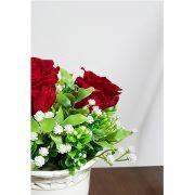 trandafiri_rosii_criogenati_2