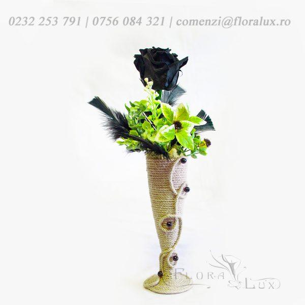 trandafiri criogenati negru