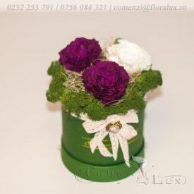 cutie-cu-trandafiri-criogenati-2