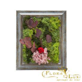 Tablou cu muschi stabilizati si flori criogenate