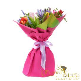 Florarie Iasi Flora Lux