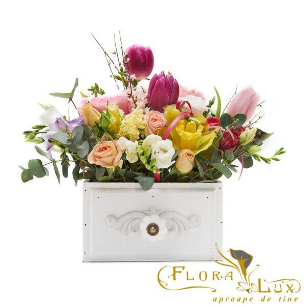 Florarie Iasi online